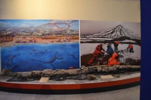 Painel da Antártica na exposição do Museu Nacional