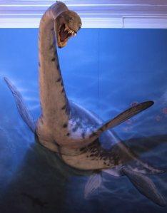 Reconstituição do plesiossauro no Museu Nacional