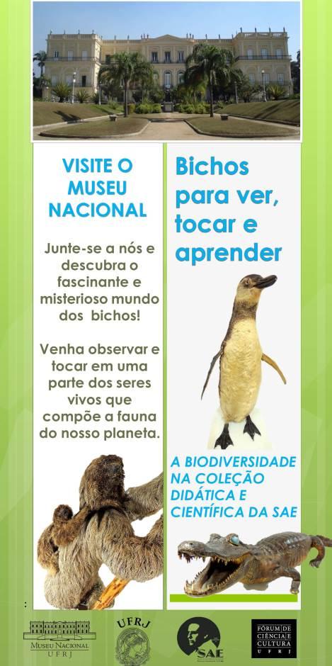 O Museu Nacional possui o maior acervo de primatas neotropicais do continente.